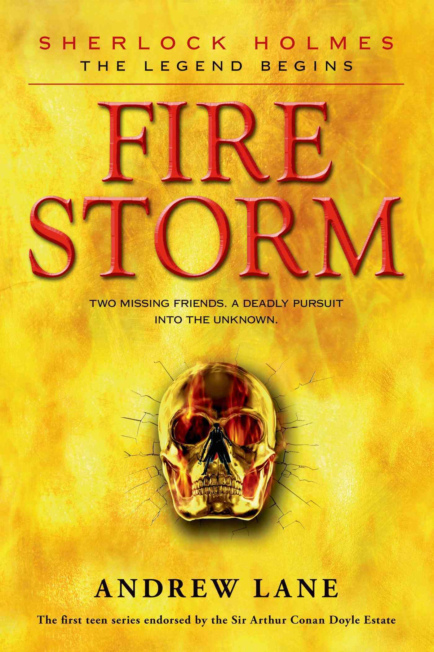 Fire Storm By Lane, Andrew